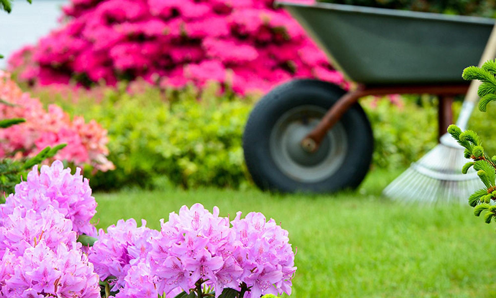 Eric Lemoussu Gardening